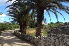 apartments4U-croatia-dugi-otok-sightseeing-17